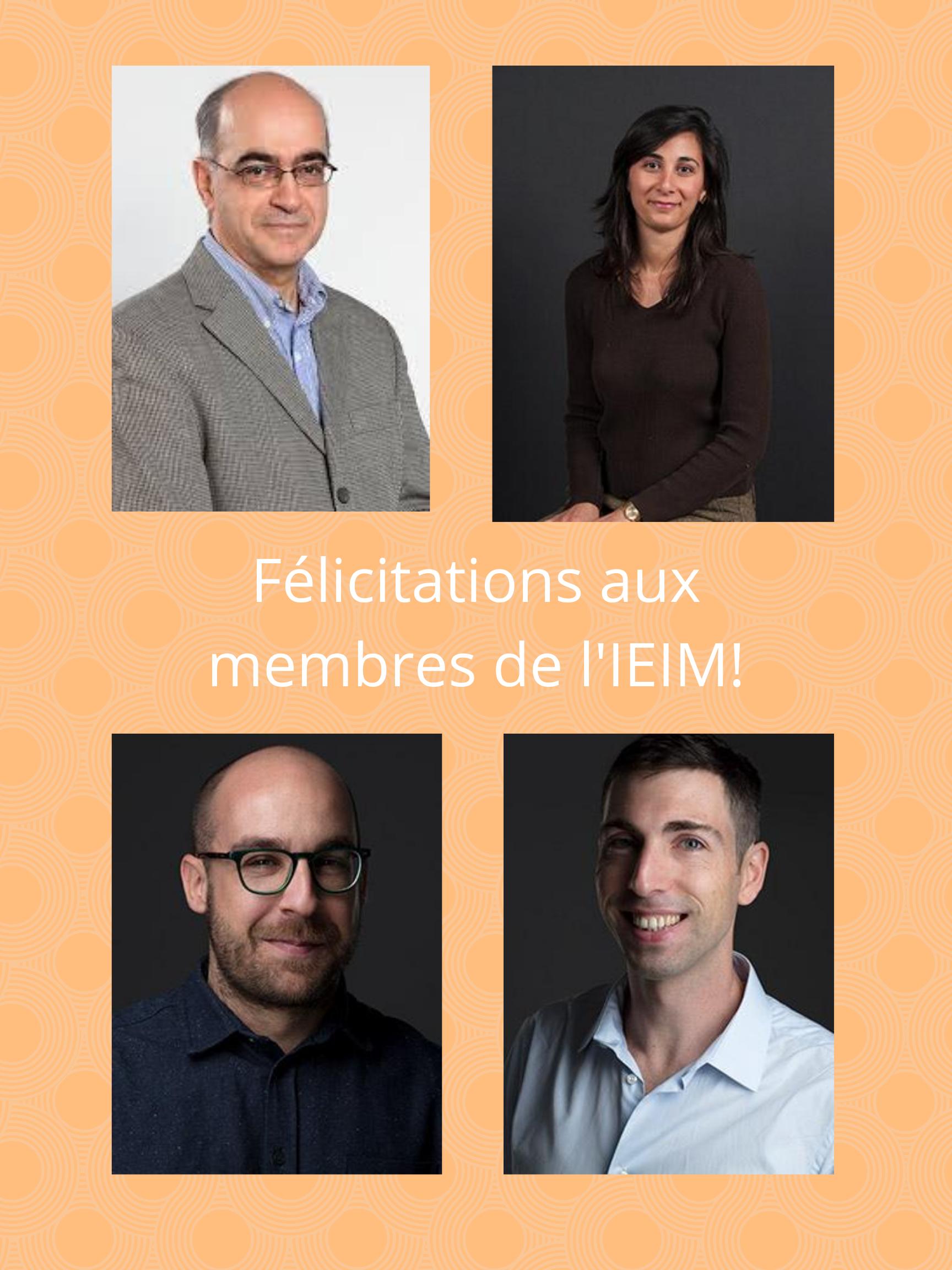 Félicitations aux membres de l'IEIM ayant reçu une distinction et du financement pour leurs recherches!